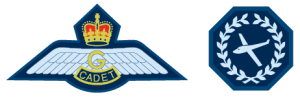Glider Pilot Scholarship (GPS)